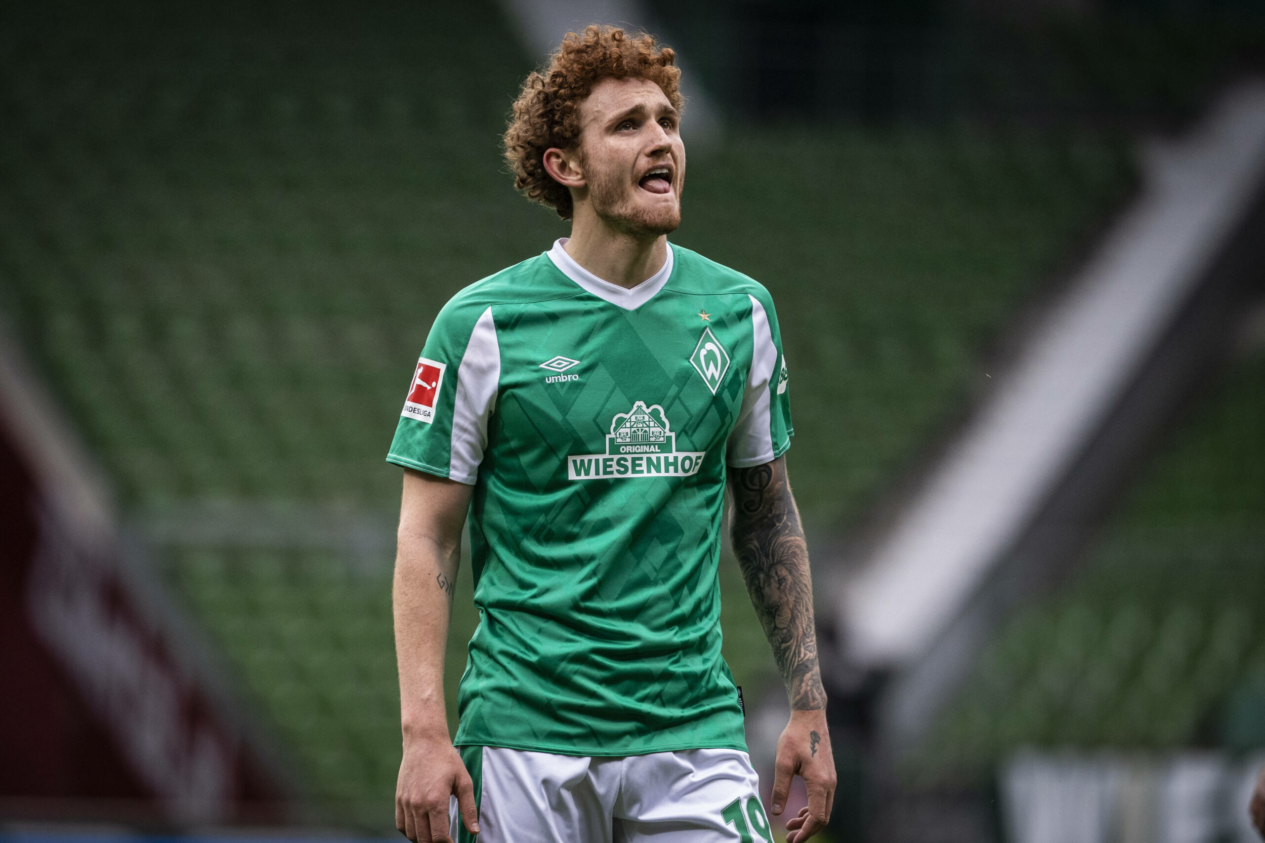 Josh Sargent (Werder Bremen)