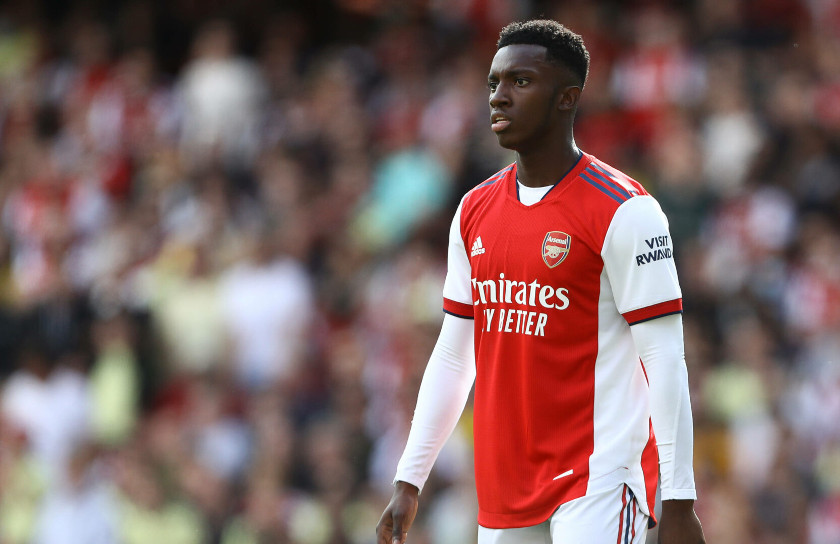 Eddie Nketiah im Trikot des FC Arsenal