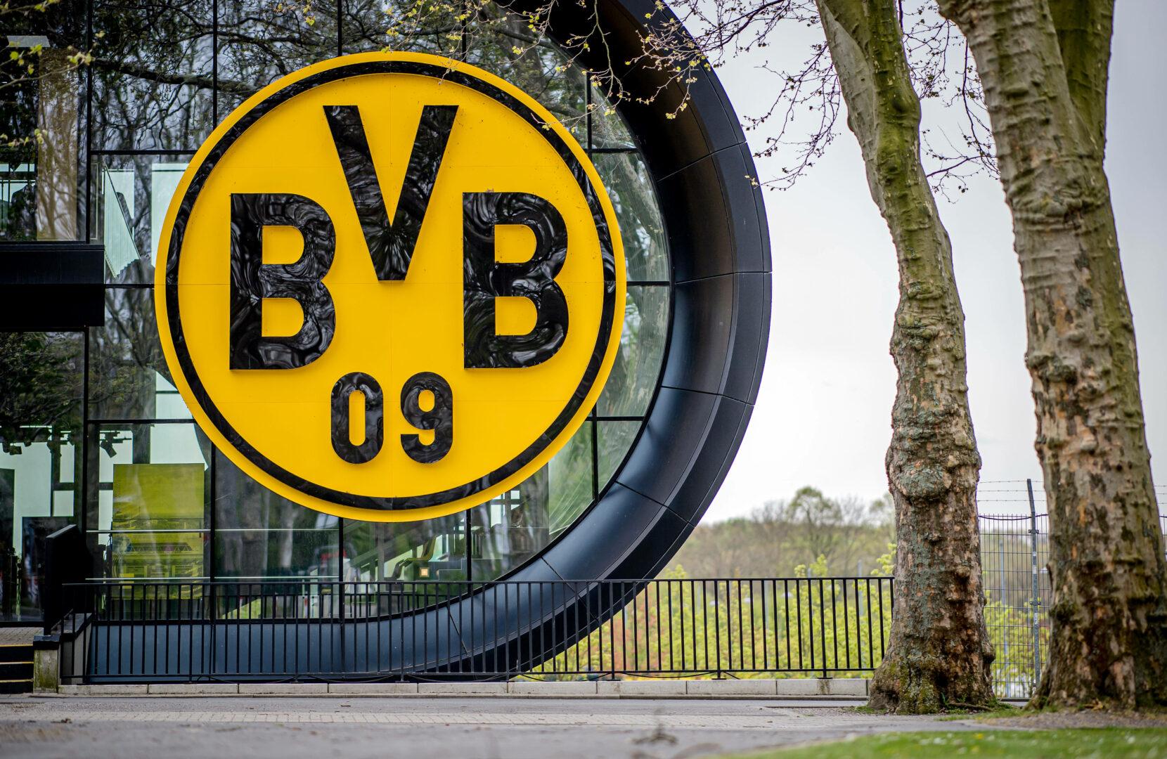 Logo des BVB